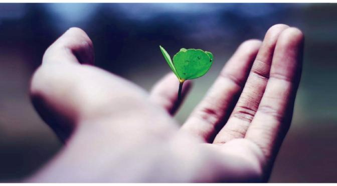Intelligenza emozionale – Usare l'empatia per oltrepassare i limiti – Forlì